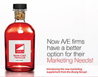 Zweig Group marketing materials