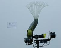 dragonfly exoskeleton projection