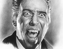 Dracula's portraits