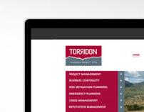 Torridon Consultancy Website