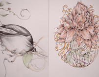 The Opposite Of Flower