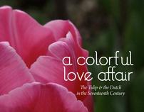 Tulip Brochure