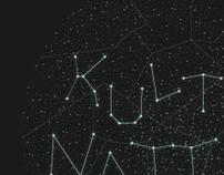 Kulturnatten 2010 (Culture Night)