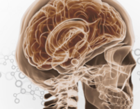 Neuroscience at National Institue of Health
