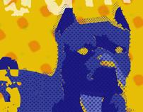 Identity & Promotional Materials / Client: KC BluesAmps