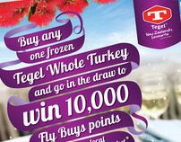 Tegel Christmas Promotion – Point of Sale