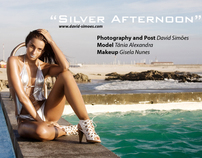 """"""" Silver Afternoon"""""""