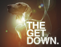 The Get Down...