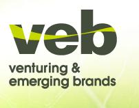 Venturing & Emerging Brands Web Copy