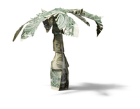 Dollar Bill Palm Tree for REDBOOK Magazine