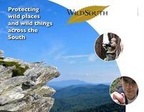 Poster for Wild South, a non-profit environmental org