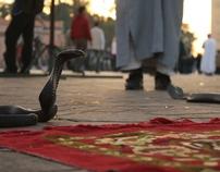 Photography Morocco 2009