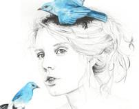 Where do my bluebirds fly