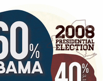 2008 Election Infographic