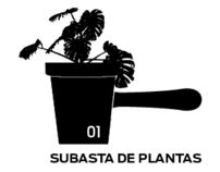 SUBASTA DE PLANTAS