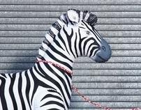 My Pet Zebra