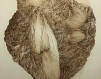De rerum natura (plume et lavis depuis 2005)