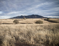 Appleton-Whittell Research Ranch Experience
