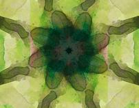 Experimental Mandala Project No. 1