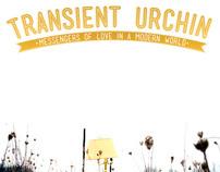 Transient Urchin Poster