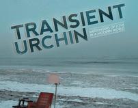 Transient Urchin Poster 2