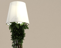 EDERA LAMP