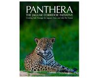 Jaguar Corridor Brochure