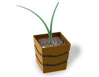 Biodegradable plant pot