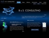 B&S Consulting Website