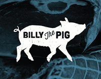 Billy The Pig Identity