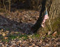Civil War Witness Trees