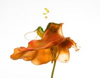 Fluid Flowers