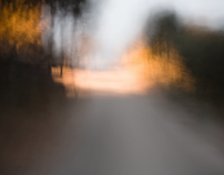 Limited Visibility - photography
