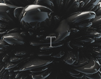 Amplifying The Typography Experience, T