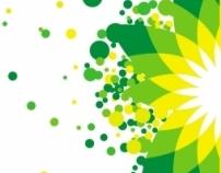 BP Annual Report 2007