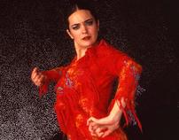 """DUENDE"", flamenco photo morphing animation"