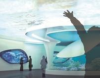 Hurghada Aquarium