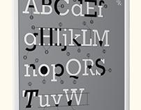 Type Anatomy (Rockwell)