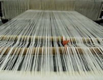 Project carpet