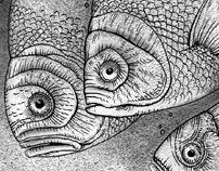 Boy from Fish-city | comics