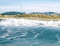 san francisco shore