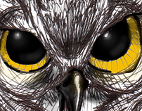 sketches: owls