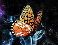 Orange Buterfly