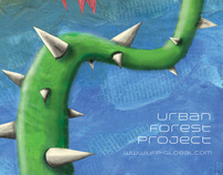 Urban Forest Project Ideas