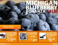 Ad Header Fruchey's Blueberry Sale