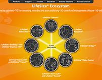 LifeSize Ecosystem