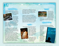 Boston Aquarium Brochure Design by K. Fairbanks