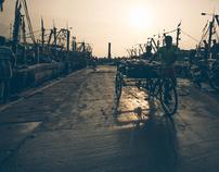 fishing harbor.