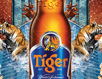 Tiger Translate Mongolia 2012
