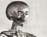 Skeleton Ink Study